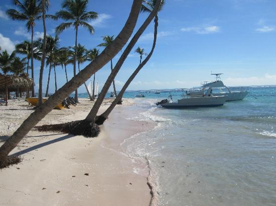 Club Med Punta Cana: la plage - avec les bateau de plongée 