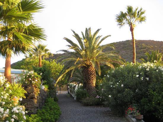 Todoque, España: Gartenweg zu den Bungalows