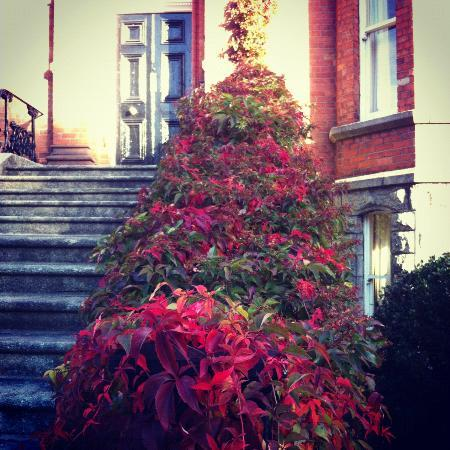 Autumn at Ariel House