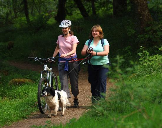 Wemyss Bay, UK: So much to do at Clyde Muirshiel, bring the dog for a walk, have a picnic, go cycling or do a bi