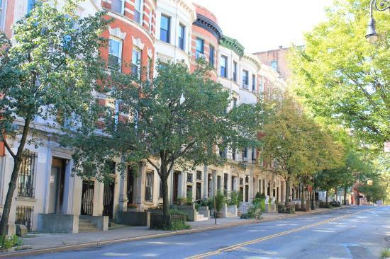 Candy Hill Harlem: View of the typical Harlem houses in Convent Ave
