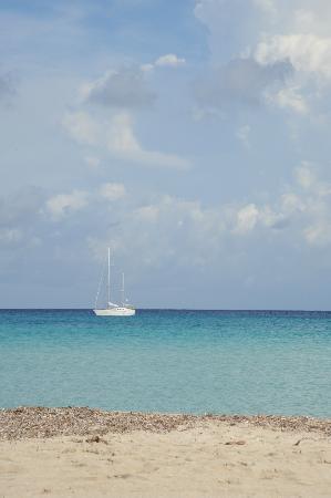 Hotel Riviera: la barca