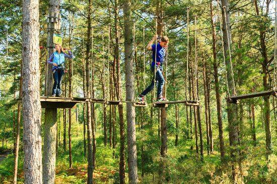 Slough, UK: Tree Top Fun