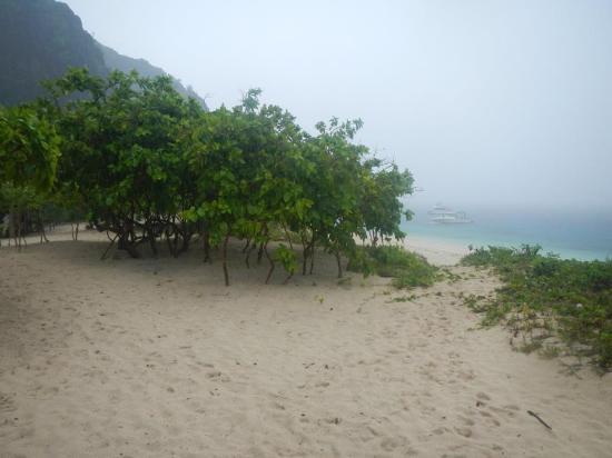 Black Island: 1