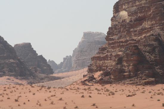 Wadi Rum Adventures: Wadi rum
