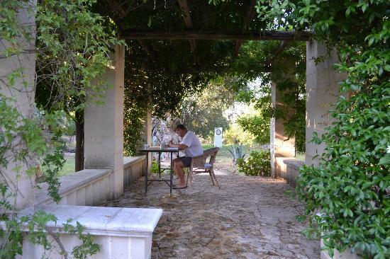 Il Collegio : pergola in the garden