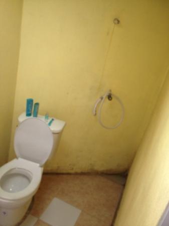 Tiger Hut: Badezimmer, Dusche Spritzt überall Hin, Aber Der Wasserdruck Ist  Ok :