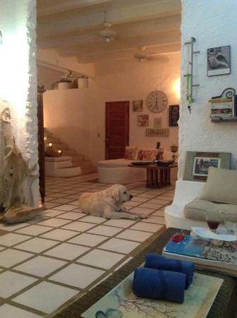 Posada Mediterráneo: Hall