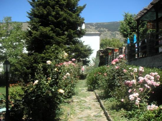 هوستال بوكيرا: Jardín