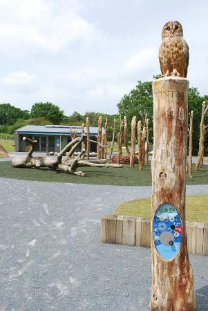 Westleton, UK: The Wild Zone and Discover Centre for family fun and school visits