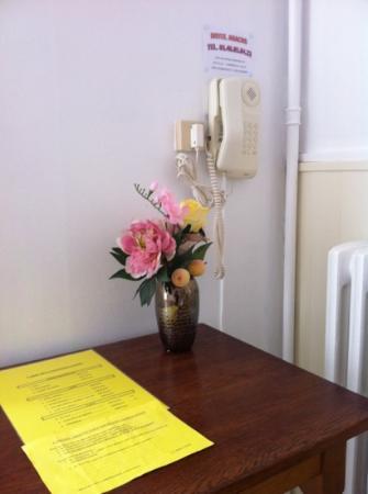 Hotel Abacus : les fleurs en plastique dans la chambre donnent le ton vieillot