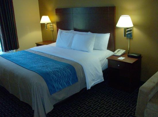 BEST WESTERN Milton Inn: Standard King Room