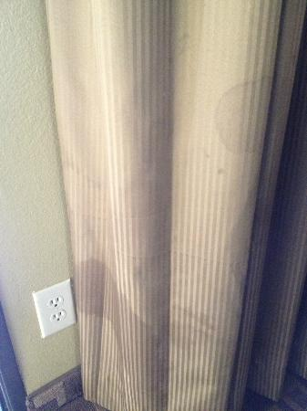Quality Inn, Near Chico State : Stains on curtain... yuck!