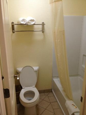 Quality Inn, Near Chico State: Bathroom