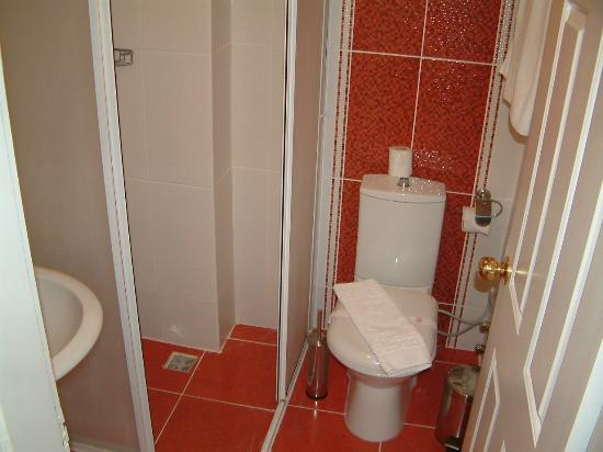 Destina Hotel: Toilet and shower