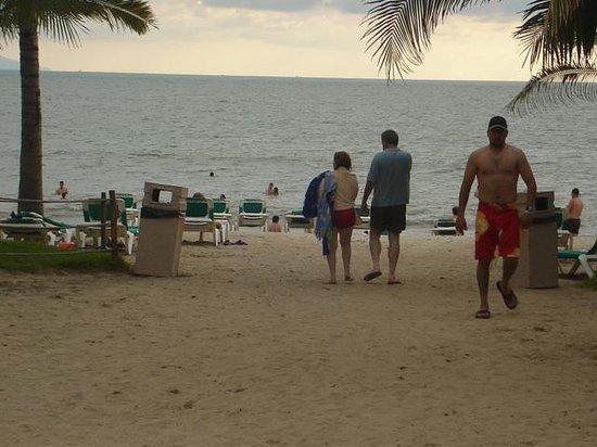 Nuevo Vallarta Beach :                   Delfines en la playa