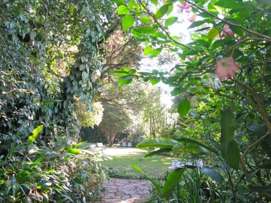 Solar da Ponte: Garden