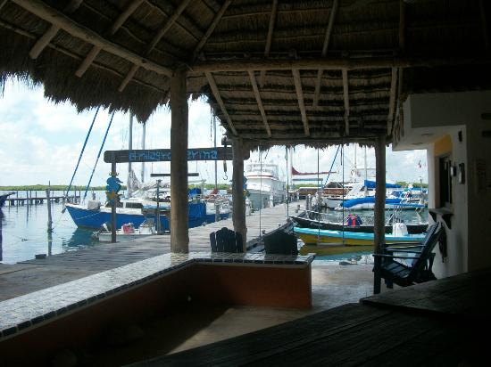‪‪El Milagro Beach Hotel and Marina‬: A view of the Marina from the palapa where everyone gathers to solve the worlds problems.