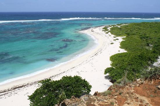 Barbuda Cottages: View from the Cliffs at Two Foot Bay