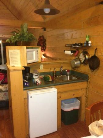 Alaskan Suites: Kitchen area