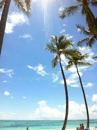 Club Med Punta Cana: |Beach