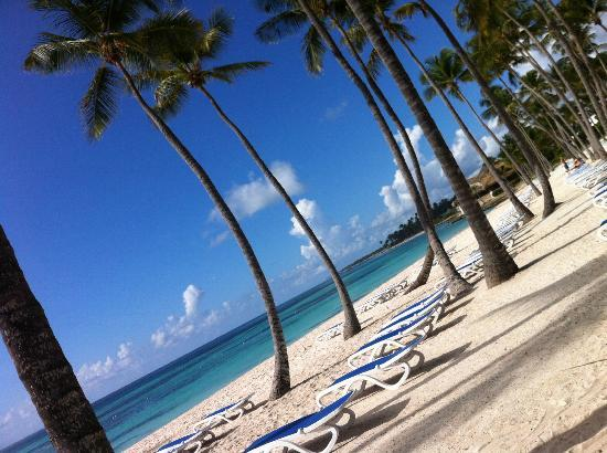 Club Med Punta Cana: Beach