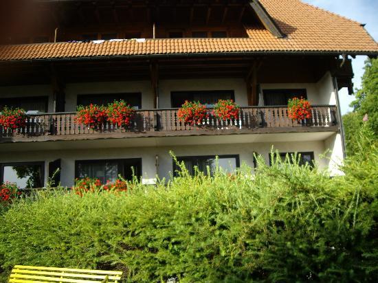 Hotel Hochfirst: hotel