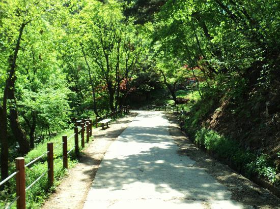 Namhansanseong Provincial Park: Nature Inside the Fortress Walls
