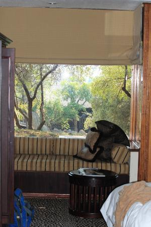 Bakubung Bush Lodge: looking out our window at our private patio and beyond
