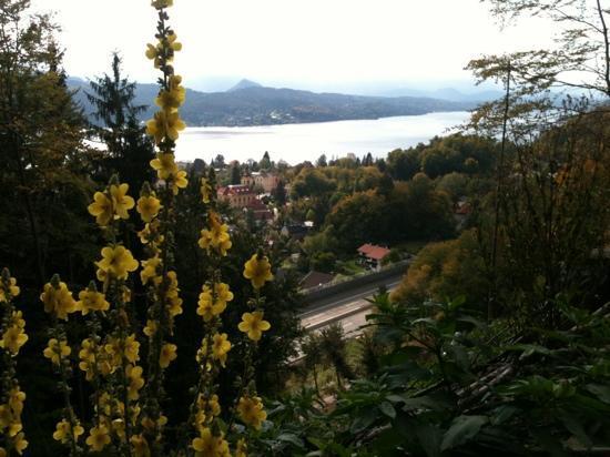 Hotel Balance: views near the panoramahotel