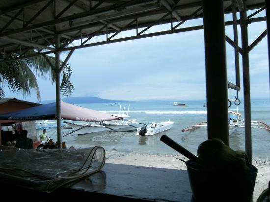 Big Apple Dive Resort : View from the bar