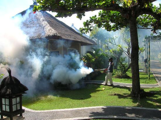 Aneka Lovina Villas & Spa: Fumigando la villa
