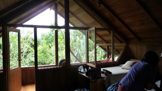Casa Divina Lodge: View from cabana