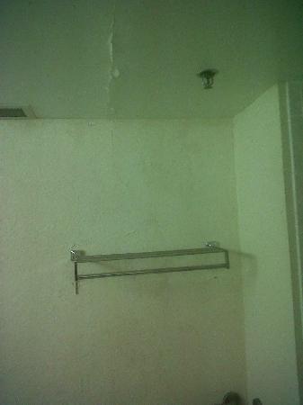 Richmond Airport Hotel : Ceiling in Bathroom