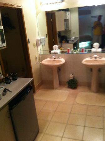Sybaris Indianapolis: Bathroom area
