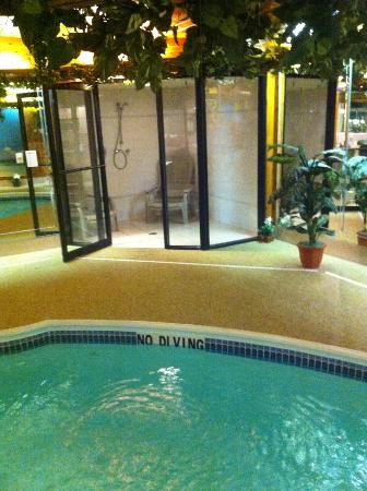 Sybaris Indianapolis: Shower/steam room