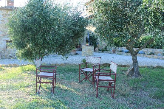 B&b Le Querciole Del Chianti : propriété entourée d'oliviers