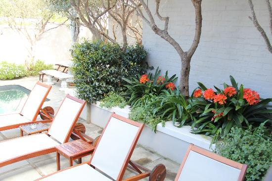 Hermanus Lodge on the Green: loungers by the pool