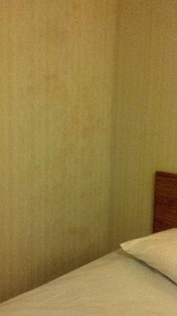 87 Motel: moldy wall 