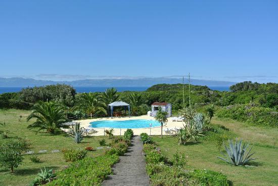O Zimbreiro: Garten mit Pool