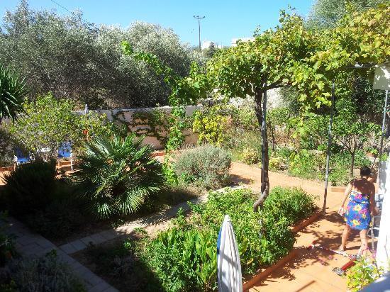 Hotel Lissos: giardino interno
