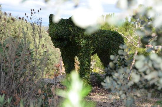 San Martin de Valdeiglesias, Spain: Un lobo acecha