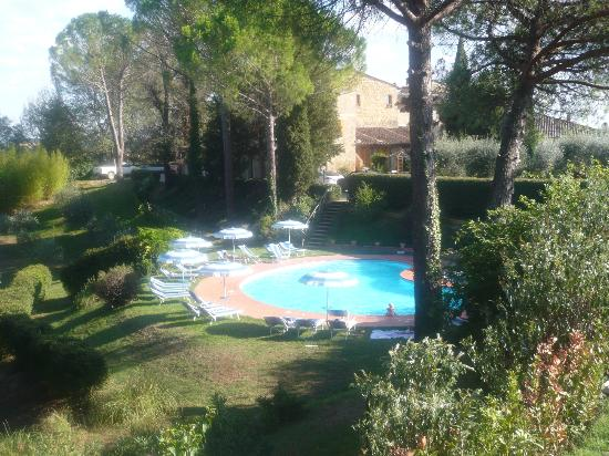 Az. Agr. La Ripa : Pool from olive grove