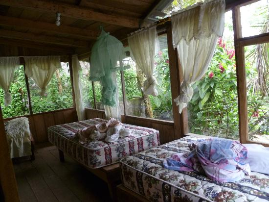 La Casa de Cecilia: Great view of the rainforest from the rooms. They're changing the sheets for us!