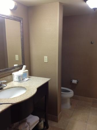 Hampton Inn & Suites Orlando - John Young Pkwy / S Park : bathroom