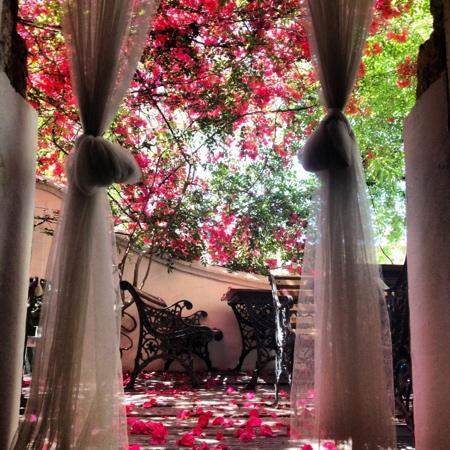 DEGVSTA restaurant: terracita