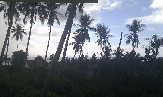 Samui Reef View Resort: View from room, amazing