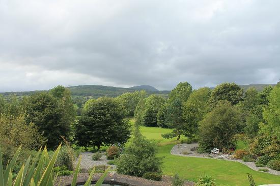 Oldchurch House B&B: View from back patio