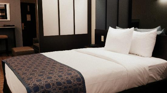 Microtel Inn & Suites Greenville : Queen Suite