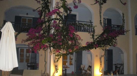 Aegean Plaza Hotel: vista de las bougainvilleas desde la habitación